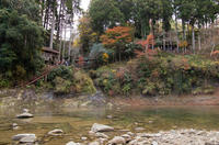養老渓谷 粟又の滝 2