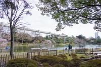 千葉公園 6