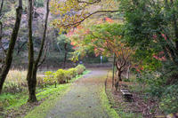 泉自然公園 3