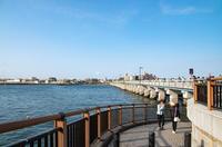 江の島 5