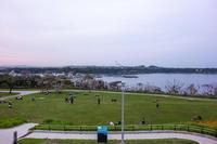 東京湾フェリーで三浦半島へ 7