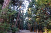 鹿島神宮 3
