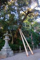 鹿島神宮 4