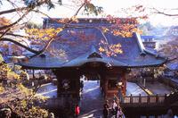 成田山新勝寺 2