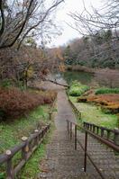 青葉の森公園 7
