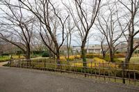 青葉の森公園 3