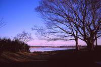 印旛沼公園