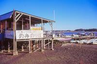 手賀沼公園 3