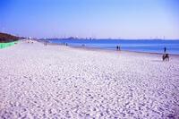 いなげの浜 1