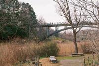 ふなばしアンデルセン公園 4