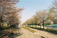 清水公園 3