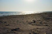 富津の海 2