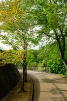 四街道総合公園 7