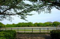 四街道総合公園 2