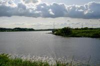 印旛沼 2