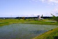 印旛沼 4