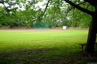 印旛沼公園 3