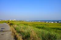 下永井海岸 1