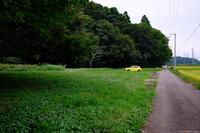 佐倉西部自然公園 1