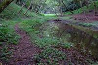 佐倉西部自然公園 4