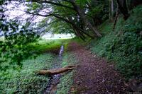 佐倉西部自然公園 3