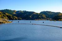 亀山ダム 3