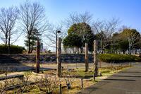 北総花の丘公園 5