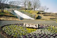 北総花の丘公園 6