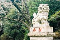 香取神宮 5