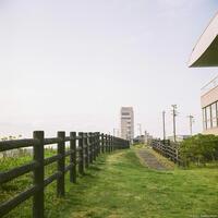 刑部岬 3