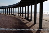 袖ケ浦海浜公園 6
