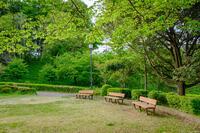 酒々井総合公園 4