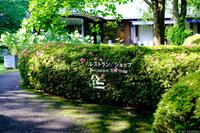DIC川村記念美術館 3
