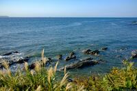 天然温泉 海辺の湯 2